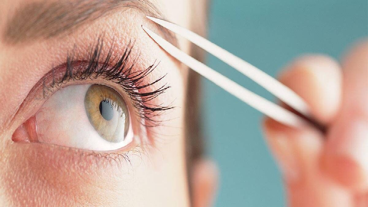 How To Pluck Eyebrows? – Shape of Your Eyebrows, Trim, and More